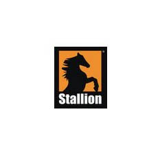 Stallion Oilfield Holdings, Inc.